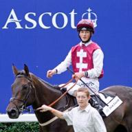 Ascot Jockey