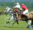 royal guards polo club