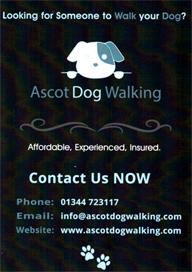Ascot Dog Walking