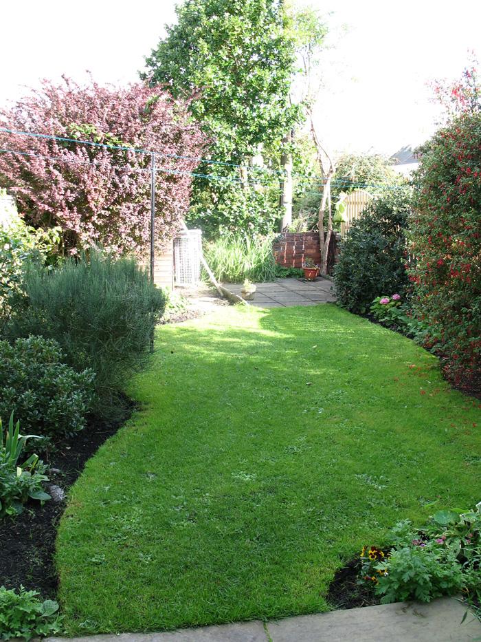 Ivybank Back Garden