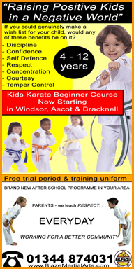Blaze Martial Arts classes in Ascot