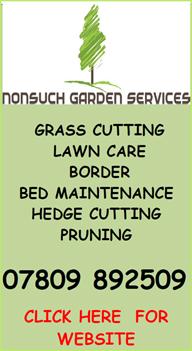 Nonsuch Garden Services Ascot Bracknell