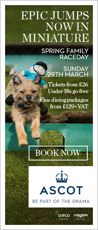 Ascot Races | Ascot Racecourse | Clarence House Chase Raceday 2020