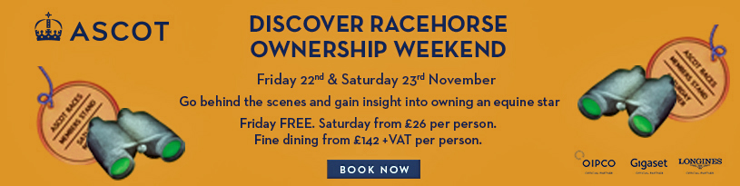 Ascot Racing | Discover Racehorse ownership Weekend