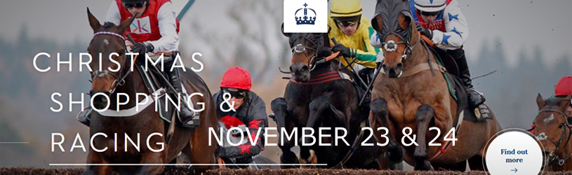 Ascot Racecourse |  Princes Countryside Fund Racing | November 23rd & 24th